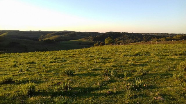 Terreno rural 132 mil metros(5,5 halqueres)